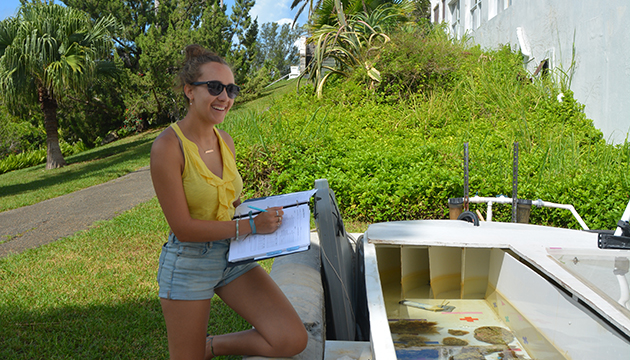 <p> 	1.4 Hannah Lampit (Bermuda Program intern, 2018) taking notes during a flume experiment. Photo: Moronke Harris.</p>