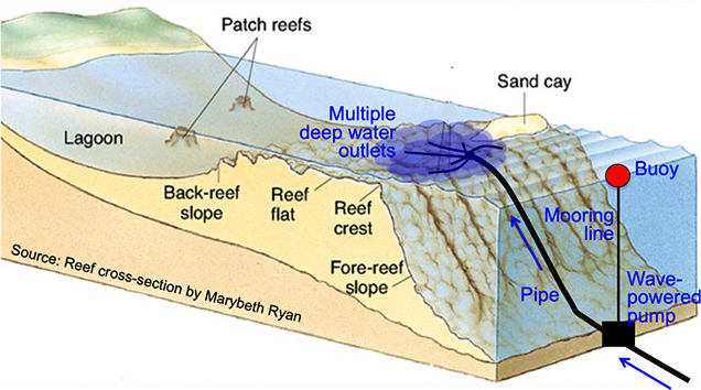 <p> 2.2 Theory of an artificial upwelling device in a coral reef ecosystem.</p>