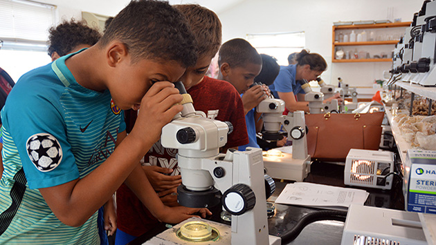 <p> Learning how to use a microscope in a lab at BIOS.</p>