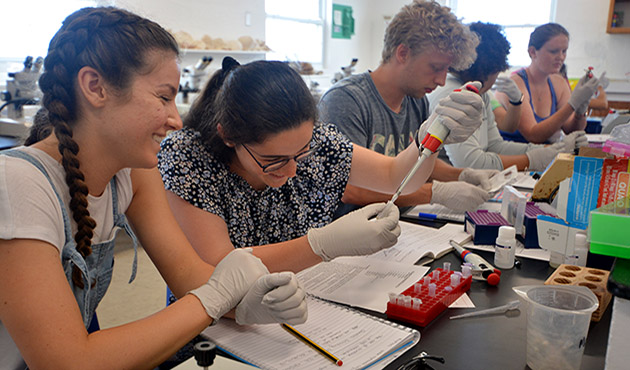 <p> 	Courses at BIOS include numerous opportunities for students to learn laboratory techniques and practices. Here, students in the Coral Reef Ecology course conduct genetic analyses in one of BIOS's teaching labs.</p>