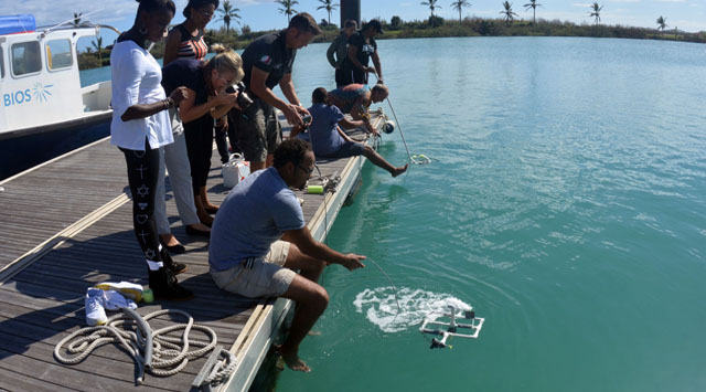 <p> 	More than 50 teachers from the Bermuda Union of Teachers designed, built and tested ROVs.</p>