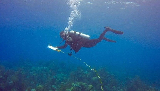 <p> 	CABIOS intern conducting an underwater transect.</p>
