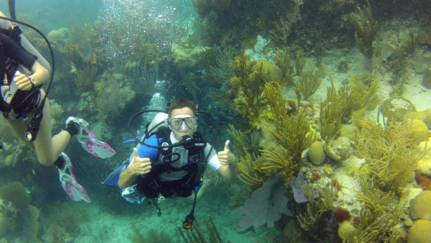 <p> 	Teegan Innis gives two thumbs up after his first dive ever on Bermuda&rsquo;s reefs.</p>