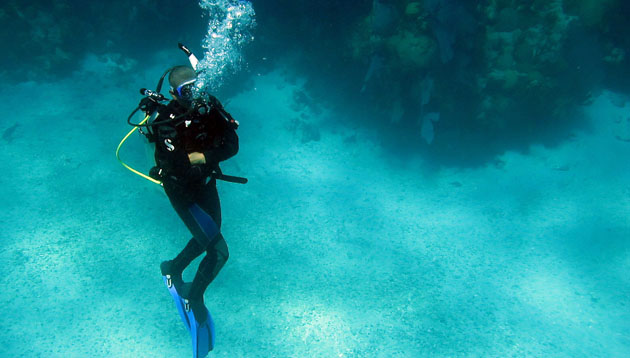 <p> Check out our video about Ocean Academy: Bermuda's source for environmental education and a global training center for young scientists.</p>