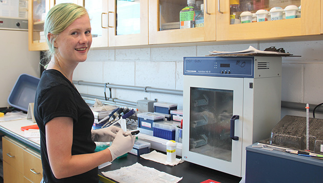 <p> 	2016 and 2015 CABIOS intern Katelyn Mcleod in the Microbial Ecology Laboratory.</p>