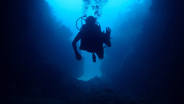 <p> 	Marine Science Intern exploring the dive site &#39;Cathedral&#39;.</p>