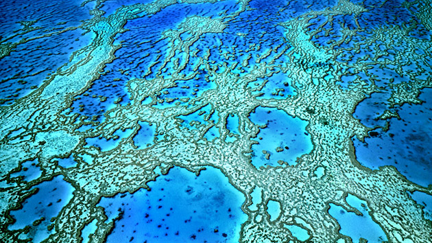 Hardy Reef viewed from the air. Whitsunday Group, Great Barrier Reef, Queensland, Australia.