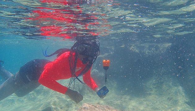 <p> Each day of the camp included a snorkel trip to a different location around the island, allowing students the chance to see and learn first-hand about a variety of marine environments.</p>