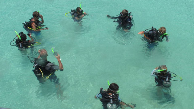 <p> 	PICS intern teaches dive skills to BIOS summer students.</p>