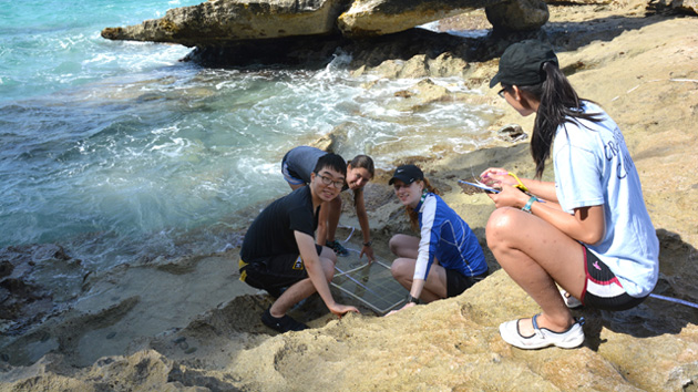 <p> Princeton students record zonation patterns of animals and plants on the shoreline.</p>