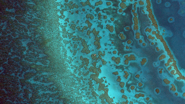 <p> 	This WorldView-2 imagery from DigitalGlobe, Inc. shows the healthy, complex Chub Heads reef and includes linear reefs, patch reefs, and seagrass beds. The sand halos around the brown reefs indicate a healthy herbivore population.</p>