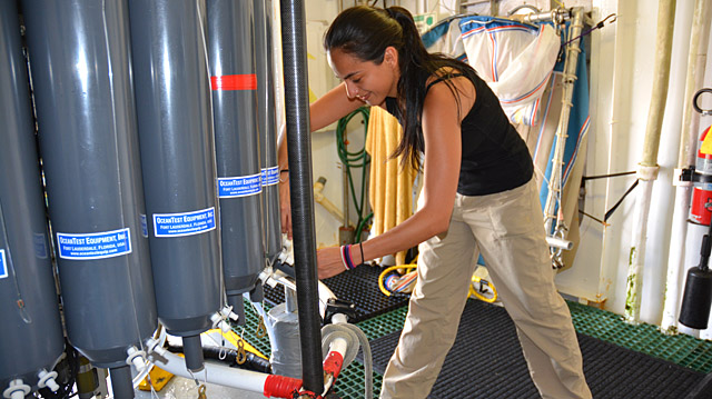 <p>SESO intern collects seawater samples. </p>