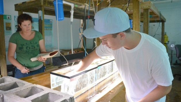 <p> 	McNally and Parsons, his mentor at the Bermuda Institute of Ocean Sciences, place corals in the tanks at the beginning of the experiment. Photo courtesy Bermuda Institute of Ocean Sciences.</p>