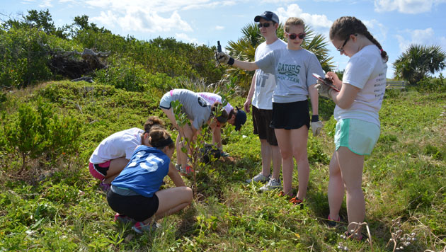 <p> 	A group of students participate in tree planting and a beach clean-up as a part of BIOS&rsquo;s partnership with the Bermuda Marine Debris Taskforce at Copoper&#39;s Island Nature Reserve.</p>